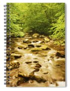 Bronze Stream Spiral Notebook