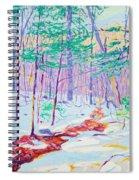 Brook In Winter, 1914 Spiral Notebook