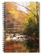 Brook Overlook Spiral Notebook