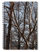 Brooklyn Bridge Thru The Trees Spiral Notebook
