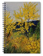 Brooms Spiral Notebook