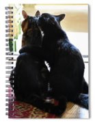 Brotherly Cat Love Spiral Notebook