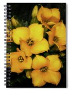 Brothers And Sisters Spiral Notebook