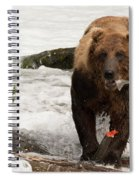 Brown Bear Eating Salmon Tail Beside Rocks Spiral Notebook