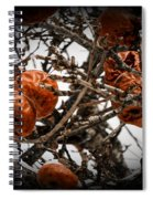 Brown Fruit Abstract Spiral Notebook