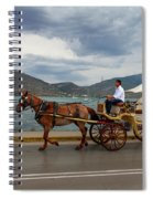 Brown Horse Drawn Carriage Spiral Notebook