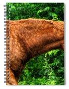 Brown Horse In High Definition Spiral Notebook