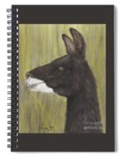 Brown Llama Profile Cathy Peek Farm Animal Art Spiral Notebook