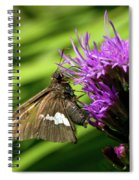 Brown Moth On Pink Spiral Notebook