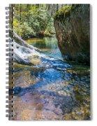 Brown Mountain Forest Spiral Notebook