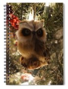Brown Owl Spiral Notebook