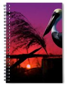 Brown Pelican At Sunset - Painted Spiral Notebook