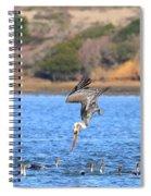 Brown Pelican Diving Spiral Notebook