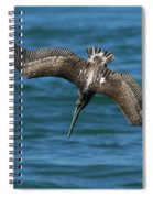 Brown Pelican Fishing Spiral Notebook