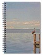 Brown Pelican Five Spiral Notebook