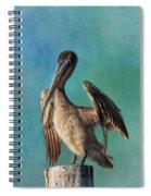 Brown Pelican - Fort Myers Beach Spiral Notebook