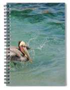 Brown Pelican Spiral Notebook