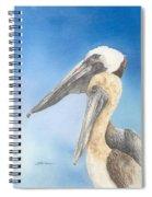 Brown Pelicans Spiral Notebook