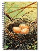 Brown Speckled Eggs Spiral Notebook