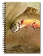 Brown Trout Spiral Notebook