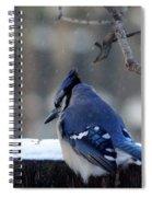 Brrrr.... Spiral Notebook