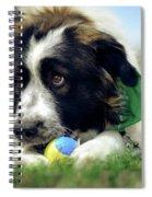 Bruno 3 Spiral Notebook