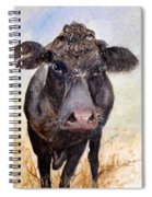 Brutus - Black Angus Cattle Spiral Notebook