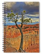 Bryce Canyon 46 - Sunrise Point Spiral Notebook