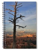 Bryce Canyon Dead Tree Sunset 3 Spiral Notebook