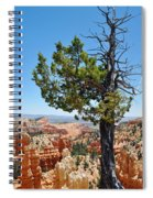 Bryce Canyon Fairyland Point Portrait Spiral Notebook