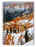 Bryce Canyon Series #1 Spiral Notebook