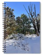 Bryce Canyon Snowfall Spiral Notebook
