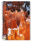 Bryce Canyon Winter 1 Spiral Notebook