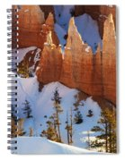 Bryce Canyon Winter 3 Spiral Notebook