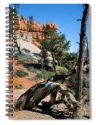Spires On Navajo Trail Spiral Notebook