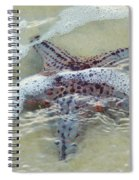 Bubble Bath Spiral Notebook