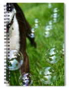 Bubble Busting Spiral Notebook