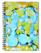 Bubble Collection Spiral Notebook