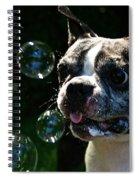 Bubble Monster Spiral Notebook