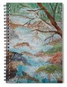 Bubbling Falls Spiral Notebook