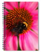 Bumble On A Pistil Spiral Notebook