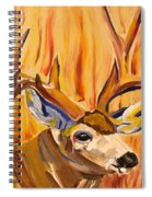 Buck In Fiery Sunset Spiral Notebook