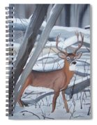 Buck In The Snow Spiral Notebook