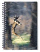 Buck Running Thru The Woods Spiral Notebook