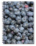 Bucket Of Blueberries Spiral Notebook