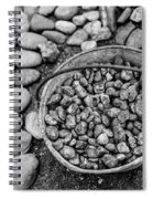 Bucket Of Rocks In Black And White Spiral Notebook