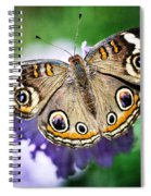 Buckeye Butterfly  Spiral Notebook