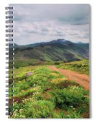 Buckskin Cyn June-3116-r1 Spiral Notebook