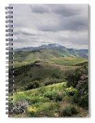 Buckskin Cyn June-3125-r2. Spiral Notebook
