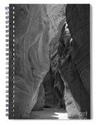 Buckskin In Black And White Spiral Notebook